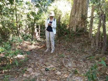 Survey in Thakhek